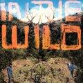 FaltyDL – In The Wild (LP+MP3)