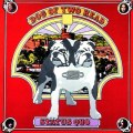 Status Quo – Dog Of Two Head