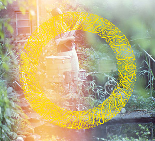 """SOFT CIRCLE """"Full Bloom"""" – the new release on Prefuse 73's Eastern Developments label …"""