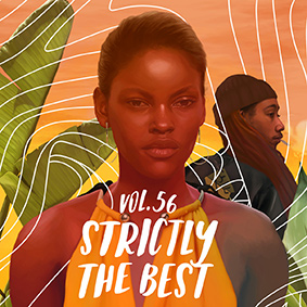 Various – Strictly The Best 56 (Reggae Edition) (VP)
